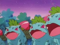 Temporada 1, episodio 51: El jardín secreto de Bulbasaur