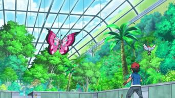 Pokémon Temporada XY 05 (Latino)