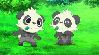 Pokémon Temporada XY 10-22 (Latino)