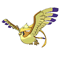 #018 Mega Pidgeot  Shiny