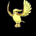 #018 Pidgeot